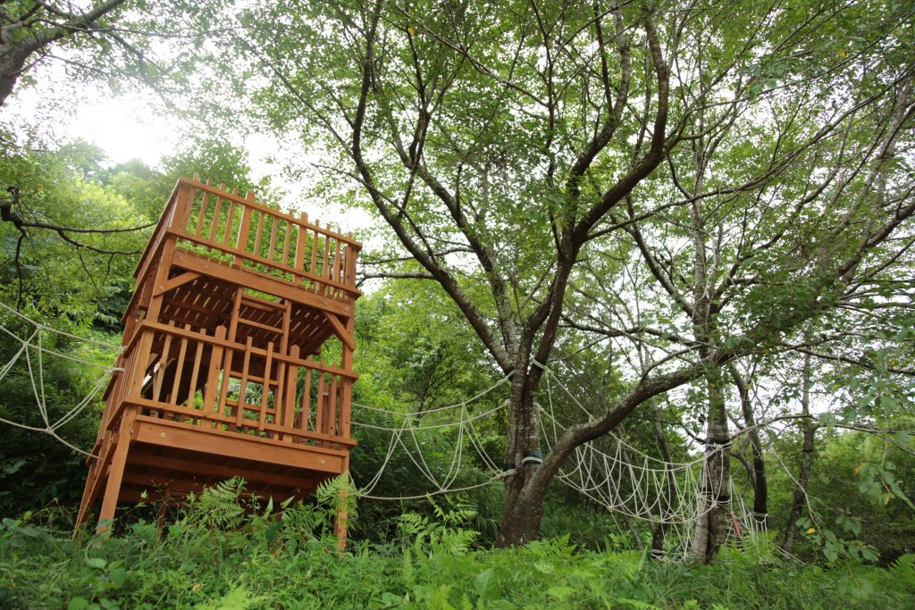 保養村にはツリーハウスもあり、大人も子供も楽しめます。